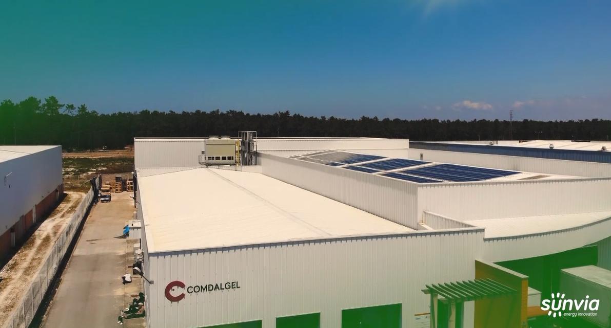 Comdalgel – Sistema Fotovoltaico de Autoconsumo